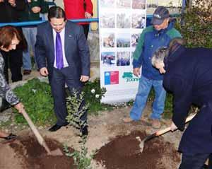 Ministro de Agricultura potencia el Programa de Arborización tras plantar árbol nativo en Pichilemu