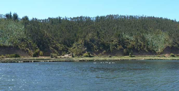 Estudio hidrológico para conocer Estado de Humedal de Cáhuil