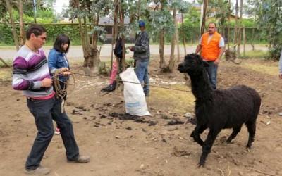 Finaliza proyecto Semanas Laborales en San Fernando
