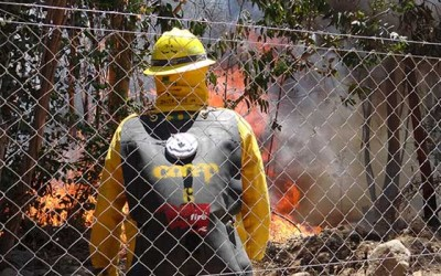 Conaf incendios forestales ohiggins