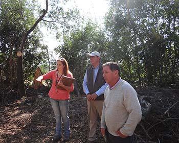Conaf apoya a propietarios forestales