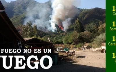 Conaf incendios forestales
