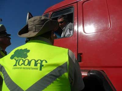 Conaf fiscalizacion carretera