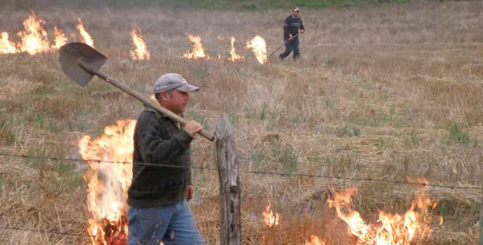Conaf quemas agricolas