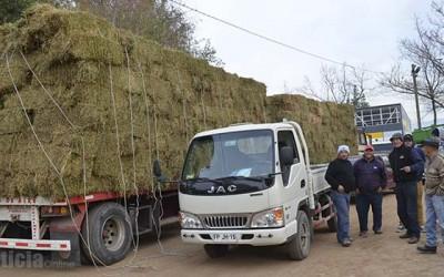 Machali fardos para ganaderos chicos
