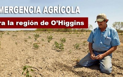 Sequia Emergencia agricola