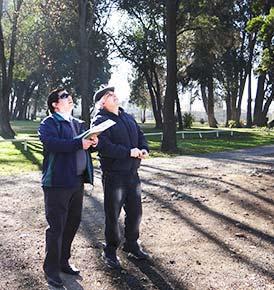 Conaf llama proteger arboles patrimoniales