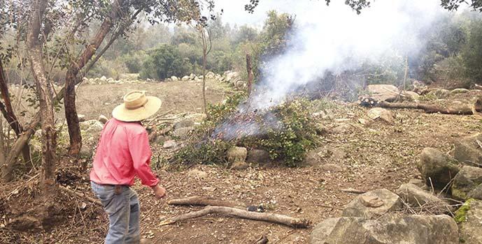 Conaf prohibicion quemas controladas agricolas