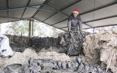 Indap Agricultor Quinta Tilcoco Quijote del reciclaje