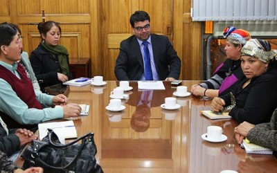 Mesa Regional Mapuche