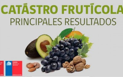 Odepa catastro fruticola OHiggins