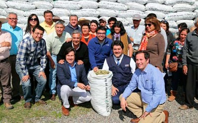 Indap ayuda alfalfa agricultores secano 2