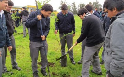 Injuv Conaf ultima arborizacion vive tus parques