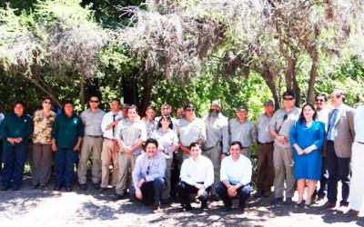 Conaf celebra 3 años Reserva Cipreses
