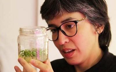 Invitan a participar al primer Encuentro Con Mujeres de Ciencia