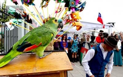 Festival de las Artes Valparaiso 2016