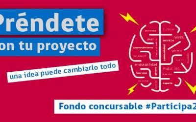 Injuv fondo Participa 2016