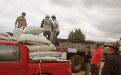Pequeños agricultores de Lolol y Litueche son apoyados con alfalfa para su ganado