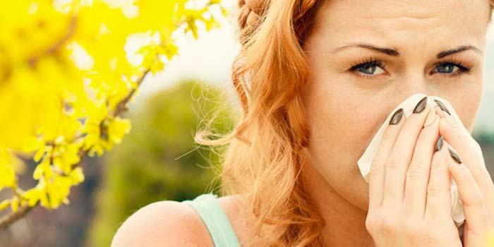 alergia alergias rinitis