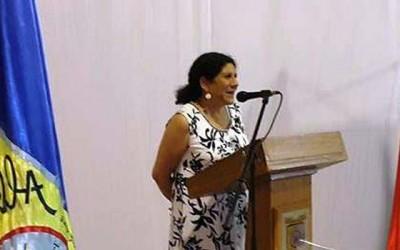 Consejo region al aprueba recursos que repondra camaras televigilancia en Palmilla