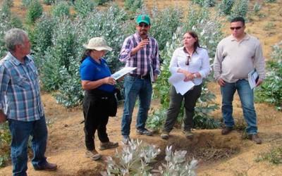 Delegacion hondureña visita la Region de OHiggins