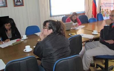 Sistema de proteccion social de Cardenal Caro planifica trabajo a desarrollar durante el 2016