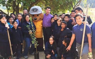 Conaf celebra el dia internacional de los bosques en escuela de Pailimo