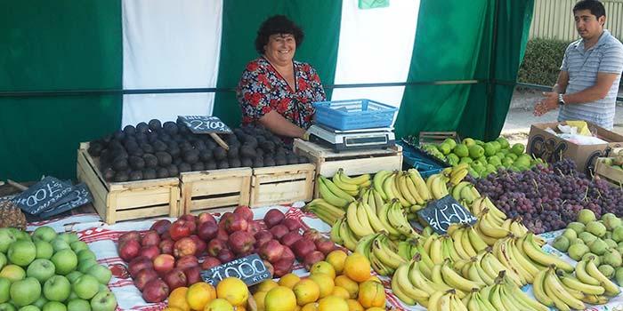 Feria libre de Machali se adjudica fondos que mejorara infraestructura