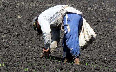 Indap OHiggins informa preselección al programa de suelos