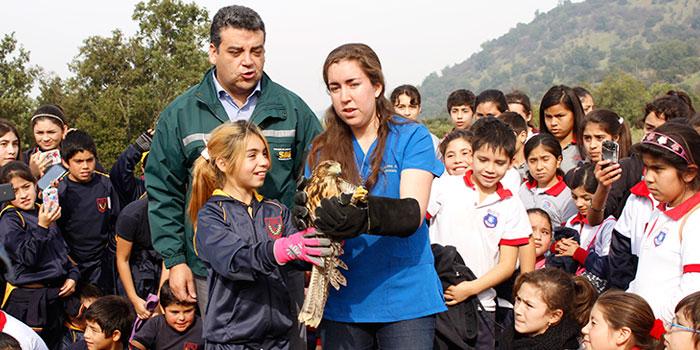 Niños de Doñihue participan en liberación de especies silvestres protegidas