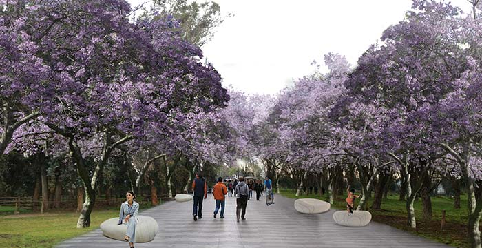 Aprobado proyecto de mejoramiento del Parque Abel Bouchón