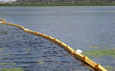 Piloto para control del alga bloom en Rapel modelo de solución para otros lagos del país
