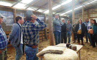 Agricultores de Pichidegua conocen novedosos proyectos en Chiloé