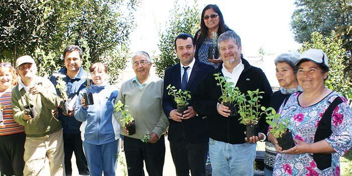 Conaf dona 400 plantas medicinales a Cesfam de Las Cabras