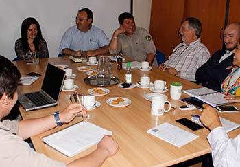 Consolidarán estudios de presencia de pumas en cordillera regional