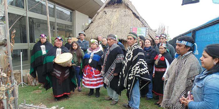 Dirigentes mapuches de la Región participarán del Proceso Participativo Constituyente Indígena