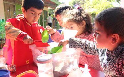 Párvulos juegan a ser científicos en jardín infantil Capullito