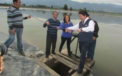 Rehabilitan tranque Miraflores para riego de pequeños agricultores en San Fernando