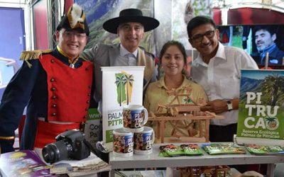 Atractivos turísticos de la Región de OHiggins deslumbran en Feria VYVA 2016