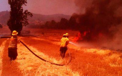 Monitoreo Alerta Roja para la comuna de Marchigue por incendio forestal