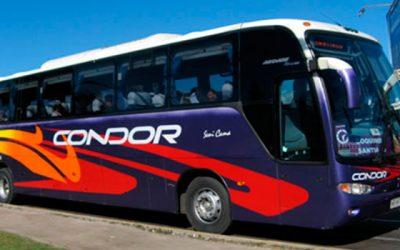 Sernac denuncia a 30 empresas de buses por incumplimiento a la ley Condorbus