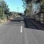 Pichileminos cuentan con un nuevo camino básico en el sector de Coguil