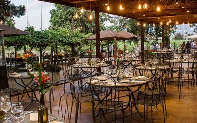 Rayuela Wine & Grill de viu manent inaugura nueva terraza