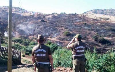 carabineros Incendio forestal en San Francisco de Mostazal