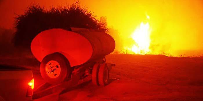 incendios forestales pumanque conaf