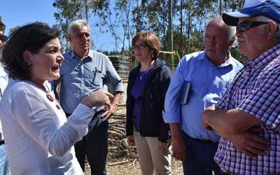 Ministra Saball se reúne con familias de Navidad afectadas por incendio forestal