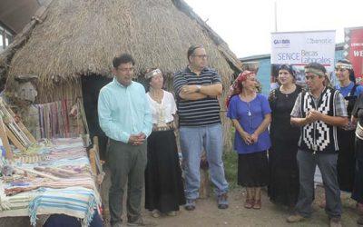 Alumnas de comunidad mapuche We Folil son visitadas por el Sence OHiggins
