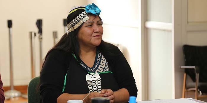 Conadi capacitará a mapuches de la región para que ejerzan docencia en colegios