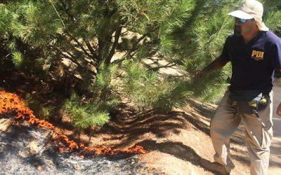 Fuerza de tareas de la PDI investiga incendio en Pichilemu