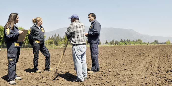 PDI investiga hallazgo de cadáver en Graneros